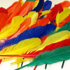 duck quill feathers